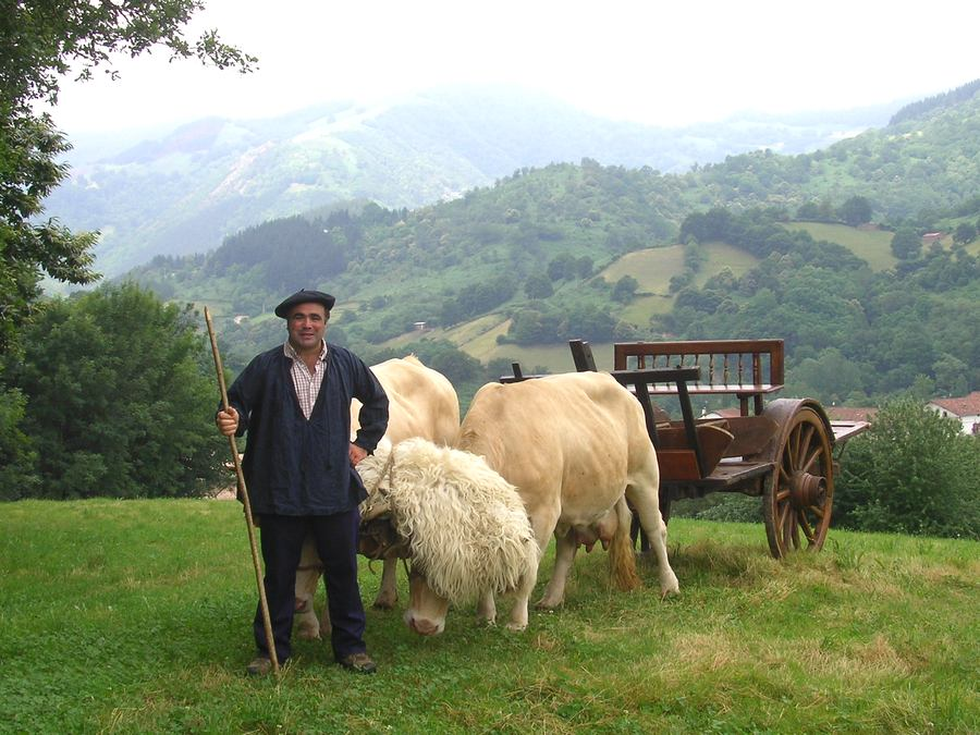 Basque ox and cart in Ituren