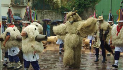 Bears in the plaza during the Ituren carnivals