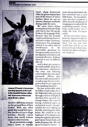Observer 2005