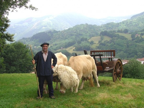Basque ox and cart 550x412 - Why do the British suffer so acutely from Linguaphobia?