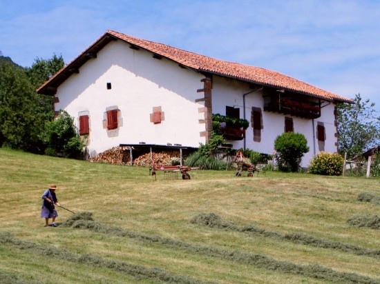 The Baztan valley making hay while the sun shines 550x412 - The Basque House - a mixed blessing.