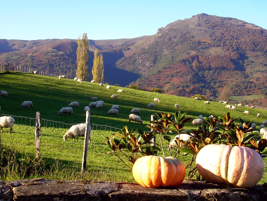 Basque autumn scenes in Ituren