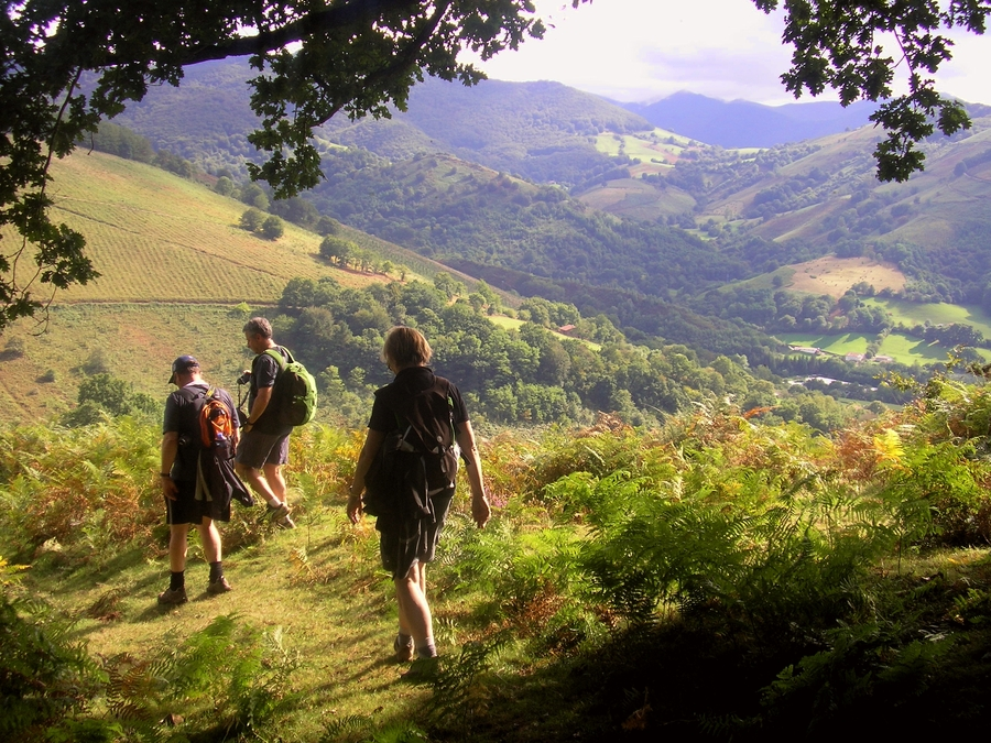 Walking in the Basque Pyrenees