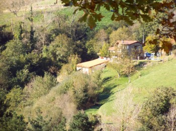 housewoods 350x262 - Beautiful Basque Country Farmhouse B & B  - with a tortoise on the tap