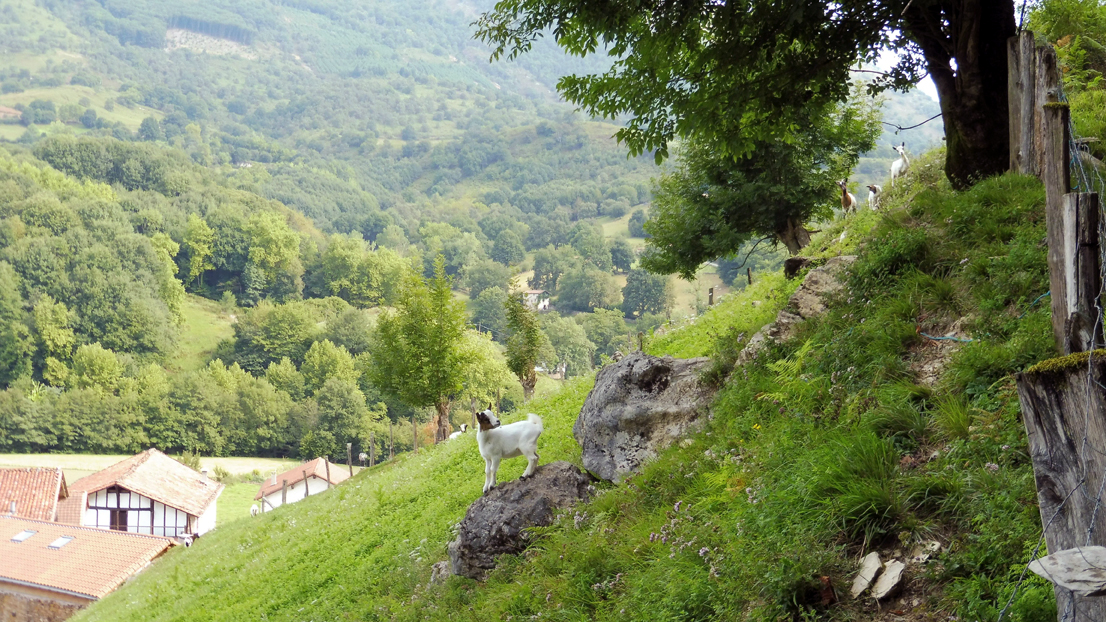 Hiking down to the Basque Hamlet of Latsaga
