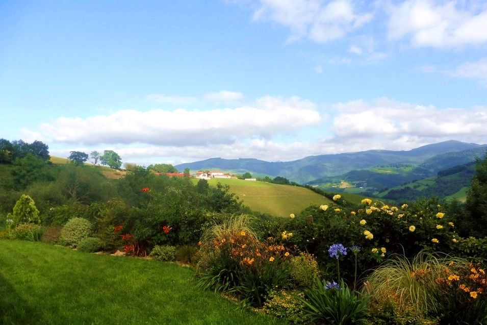 Green pyrenees