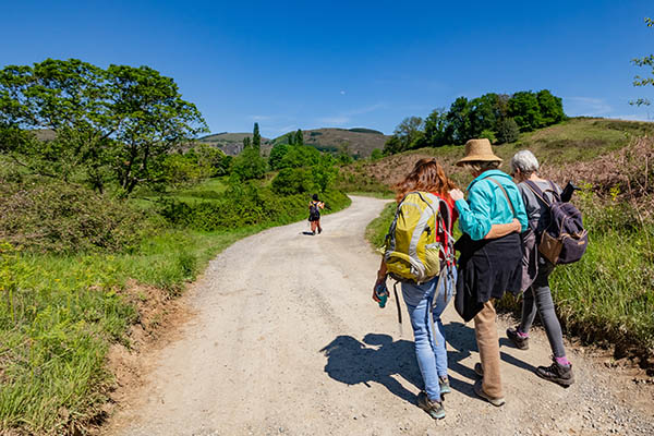 Relaxed walking holidays exploring the local Basque culture