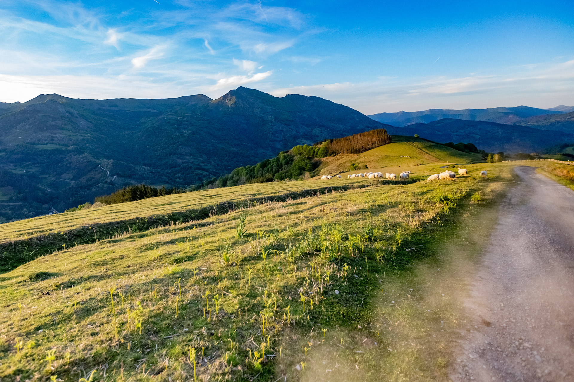 pyrenean experience - country walks in the Basque Country and Navarre north of Pamplona by Ezye Moleda