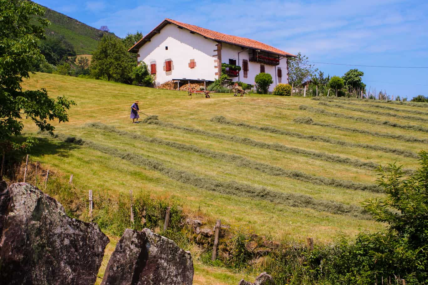 Making Hay in the Baztan Valley