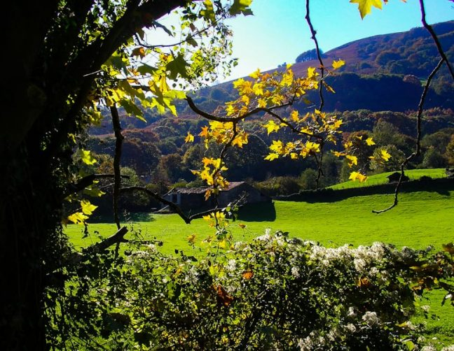 mountain farms in the Bidasoa Valley